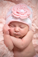Evelyn | Newborn